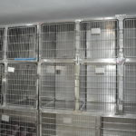 Nohl Ranch Animal Hospital in Orange, CA | treatment cages
