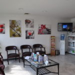 Nohl Ranch Animal Hospital in Orange, CA | Reception