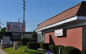 Nohl Ranch Animal Hospital | Best pet clinic in Orange, CA