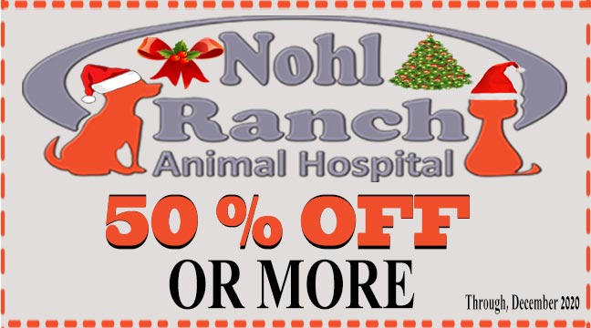 Print this coupon